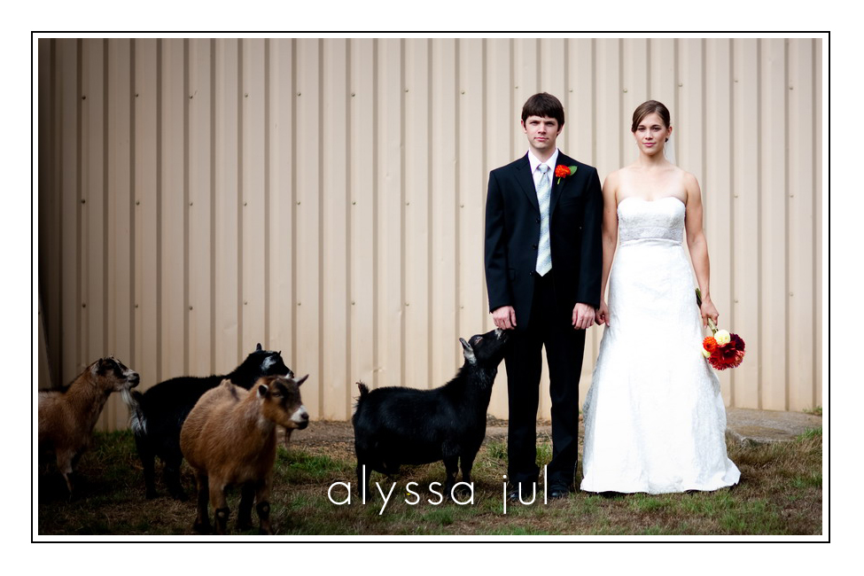 goats-bouquet