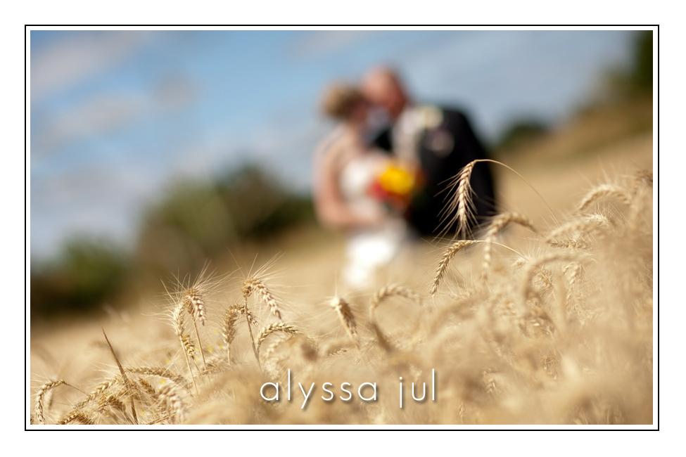 wheat-love