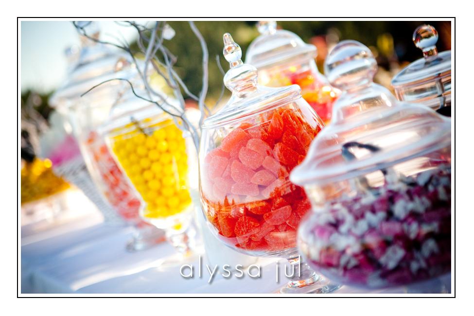 Salem-Wedding-Photography-Kiersten-Tony-7